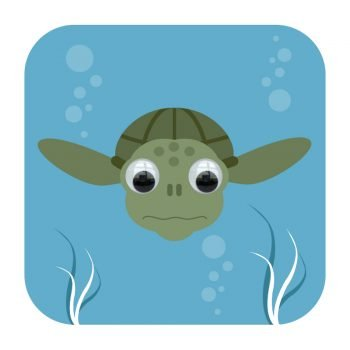 255-Tommy-Turtle