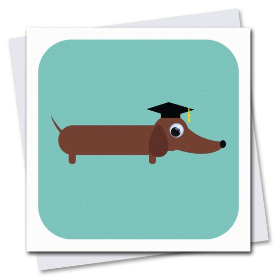 089-Clever-Sausage-Graduation-Card-by-Stripey-Cats