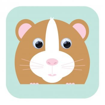 stripey-cats-holly-hamster