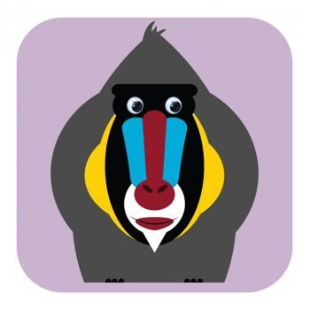 Stripey-cats-085-Maud-Mandrill