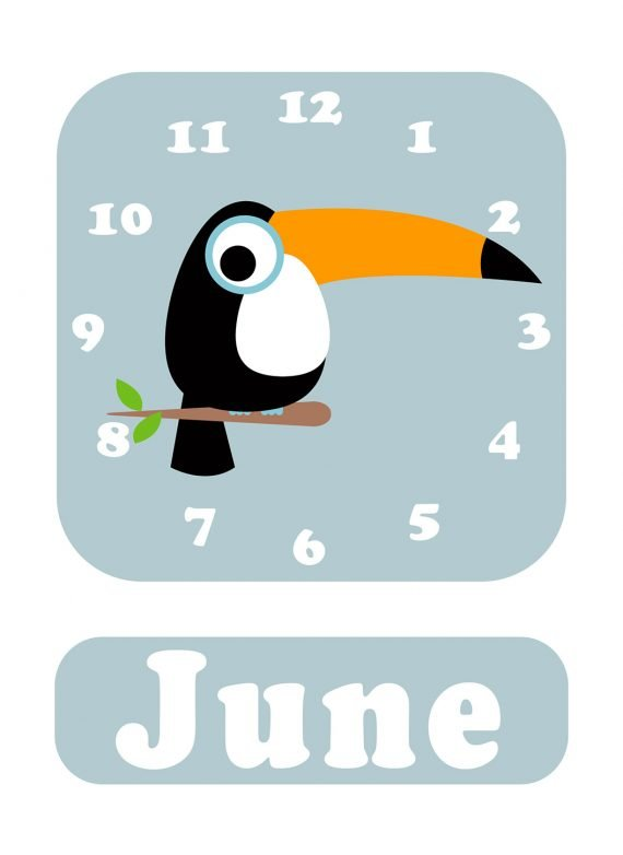 Stripey-cats-Toucan-Clock-Blue-01