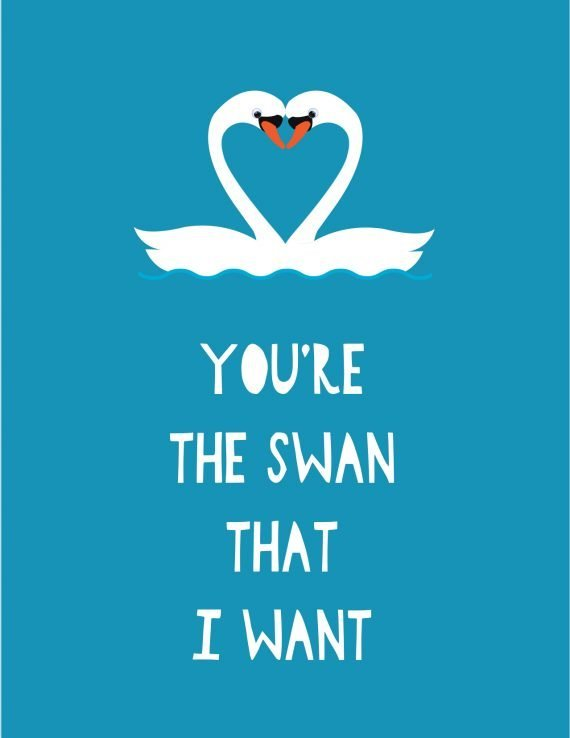 Valentines-Swan-Love-647-stripey-cats-card