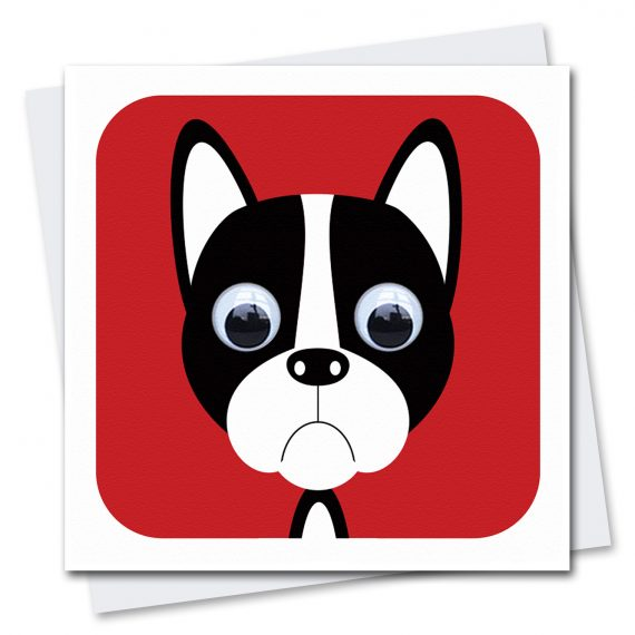245-Boris-Boston-Terrier-Children's-Dog-Birthday-Card-Stripey-Cats