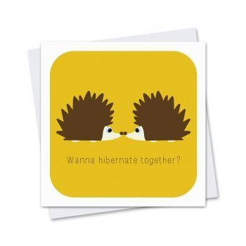 stripey-cats-hibernating-hedgehog-greetings-card